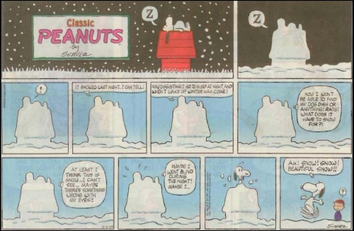 Peanuts_snow