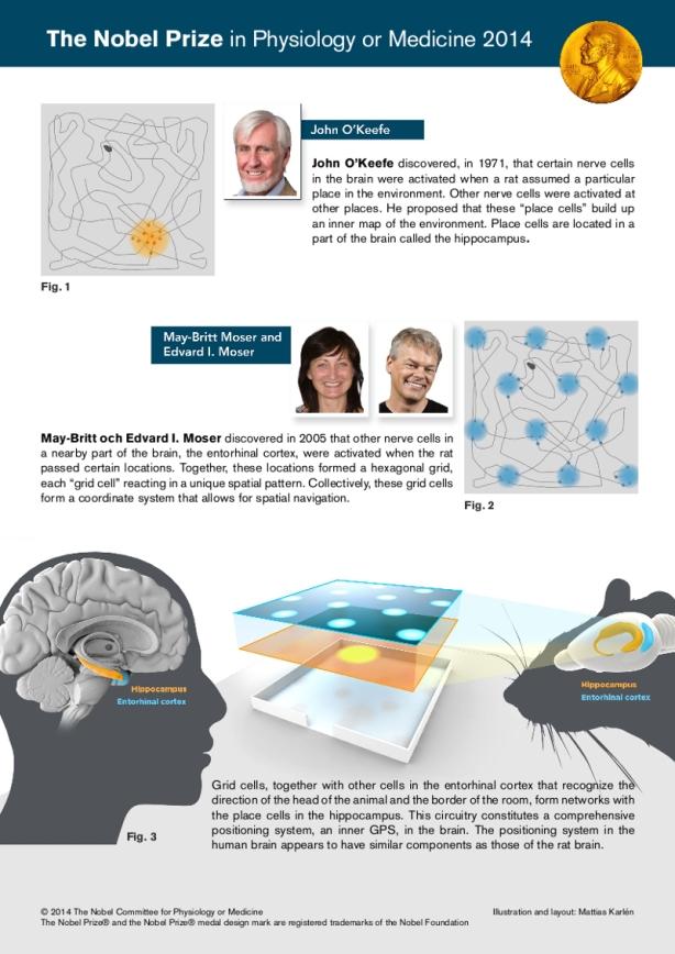 nobel_prize_physiology_medicine_2014